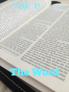 walk in the word