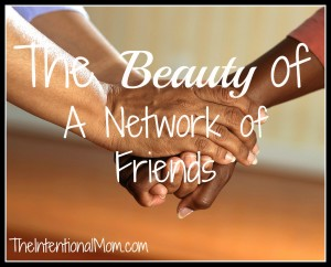 beauty of a network of friends