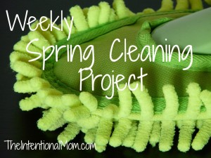 Weekly Spring Cleaning Project
