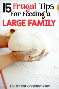 frugal-tips-feeding-family