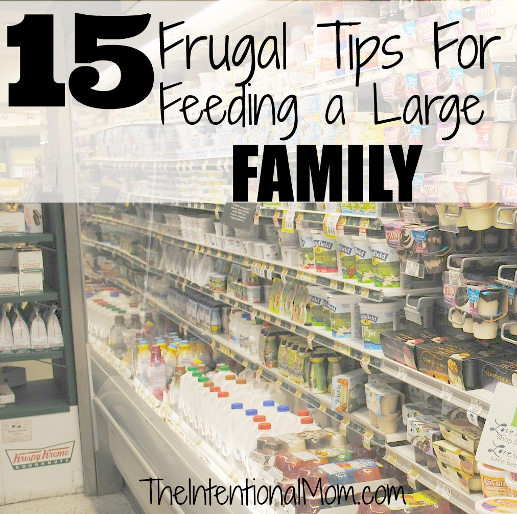 15 frugal tips for feeding a large family x2