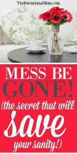 Mess Be Gone!!! The Secret That Will Save Your Sanity