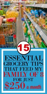 15 Essential Grocery Tips That Feed My Family of Eight for Only $250 a Month