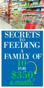 Secrets to Feeding a Family of 10 on $350 a Month
