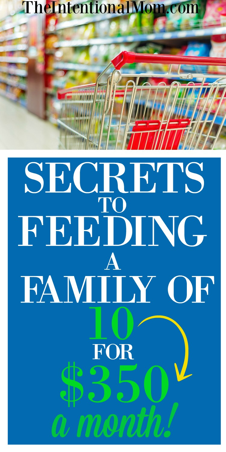 Secrets to Feeding a Family of Nine on Just $350 a Month!