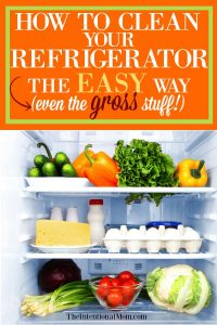 How to Clean Your Refrigerator the Easy Way (even the gross stuff!)
