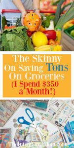 The Skinny on Saving Tons on Groceries (I spend $350 a month!)