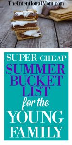 Super Cheap Summer Bucket List For the Young Family