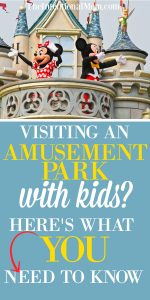 Visiting an Amusement Park With Kids? Here's What You Need to Know