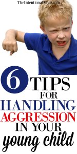 6 Tips For Handling Aggression In Your Young Child